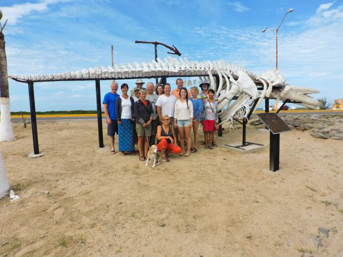 Scott & Tanya (Kialoa), Rob & Deb (Avant), Gary, Karina & ship's dog Charlotte (Sea Rover II), Jennifer & Campbell (Camdeboo), Dina, Malcolm and daughter Zophia (Good as Gold), friends Rick & Julie, and Kaylee. Grey whale skeleton at Puerto San Carlos, Magdalena Bay, Baha.