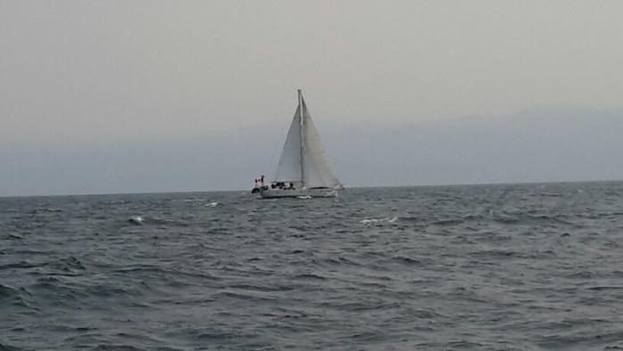 Arcola in the strait