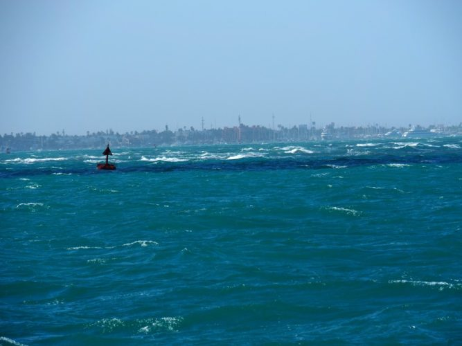 Sailing into La Paz harbor with 4 knots of current against 25 knots of wind.